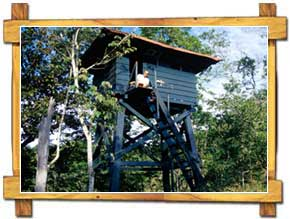 Wildlife Watch Tower of Periyar